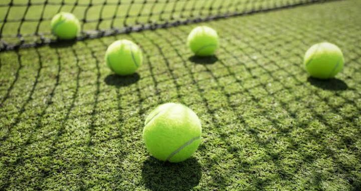 interesting and fun facts about tennis tennis balls on the ground